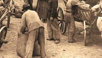 """Mărturii cutremurătoare ale celor care au înfruntat ,,foametea organizată"""" din anii 1946 – 1947"""