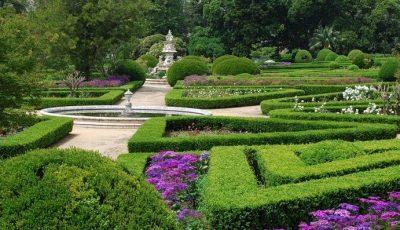 Reguli noi pentru vizitatorii Grădinii Botanice din Chișinău