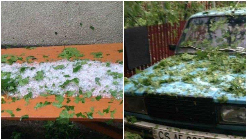 Foto. O ploaie cu grindină a distrus totul în grădini, la Căușeni