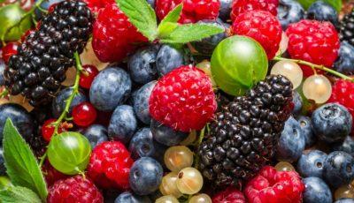 Dieta bogată în flavonoide protejează împotriva cancerului și bolilor de inimă
