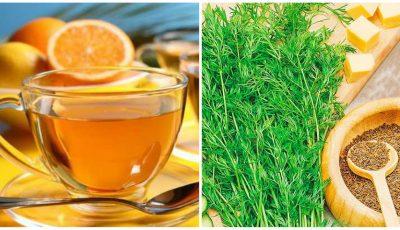 Ceaiuri de vară cu efect tonic pentru memorie și creșterea rezistenței la oboseală