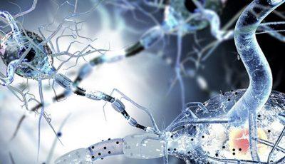 Un medicament nou anunță un succes fără precedent în vindecarea sclerozei multiple