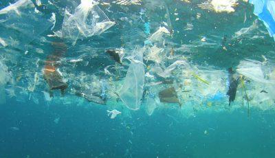 Până în anul 2050, în Marea Neagră va exista mai mult plastic decât pește