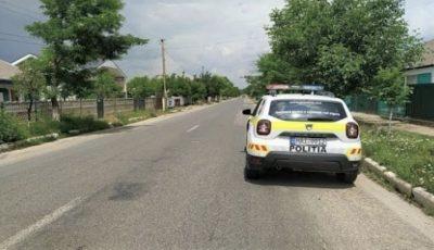Mașină ticsită cu peste 2 tone de piele de bovină, reținută de polițiști