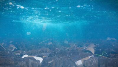 Studiu alarmant: Peste 14 milioane de tone de plastic se află pe fundul oceanului planetar