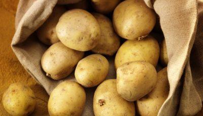 Localitatea în care sunt cultivați cei mai gustoși și ecologici cartofi din Moldova