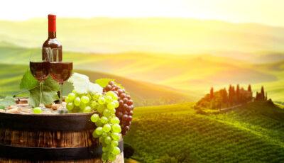Pe 3 și 4 octombrie, Moldova marchează Ziua Națională a Vinului