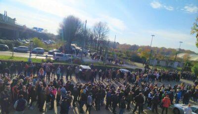 """,,De la Berlin la Hamburg, de la Frankfurt la Stuttgart"""". Moldovenii din Germania se mobilizează spre secțiile de votare mai puțin aglomerate"""