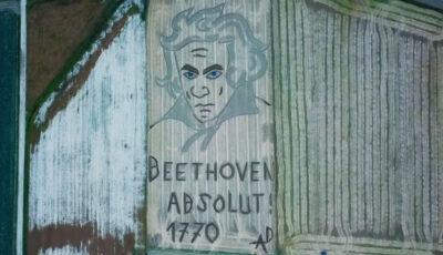 Un portret al lui Beethoven, realizat pe un câmp în nordul Italiei