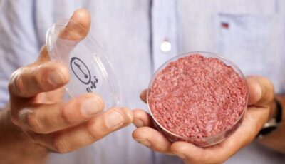 Carnea crescută în laborator, aprobată pentru comercializare într-o țară din Asia