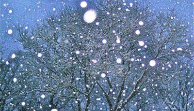 Meteo! Miercuri va ninge în toată Moldova