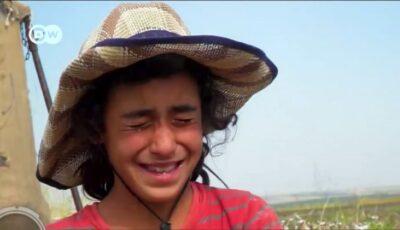 Copii exploatați în industria textilă. O fetiță de 10 ani primește 1,6 euro culegând bumbac ziua întreagă