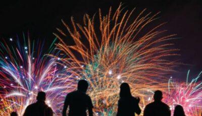 Petiție pentru interzicerea focurilor de artificii în țara noastră