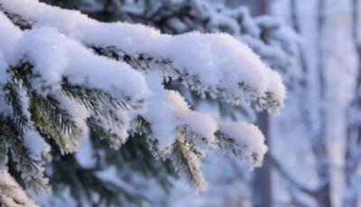 Prognoza meteo. Sinopticienii prognozează două zile de ninsori în toată țara