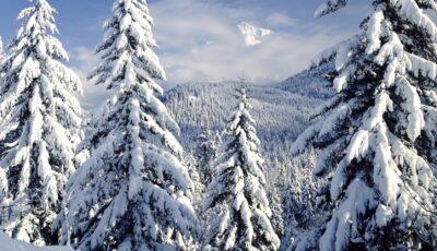 Alertă! Cod portocaliu de lapoviță și ninsoare în Moldova