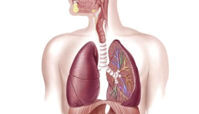 Un nou tratament pentru Covid-19. Se inhalează și ajunge direct în plămâni, reducând semnificativ riscul de a dezvolta forme severe de boală