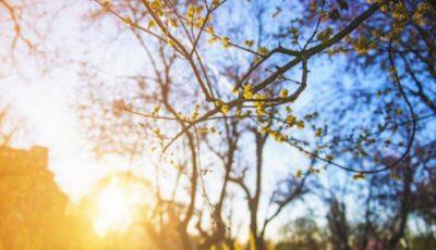 Cum va fi vremea în luna martie? Prognozele meteorologilor