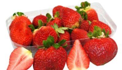 Primele căpșuni au apărut în vânzare. Avertizarea specialiștilor ANSA