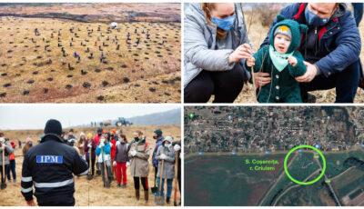 """Tinerii de la ,,Hai Moldova"""" și ,,Million Trees Moldova"""" vor finaliza mâine plantarea celor peste 12 mii de copaci pe malul râului Ichel"""