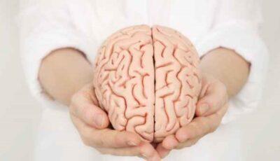 Alimente care fac rău creierului. Ar fi bine să le eviți