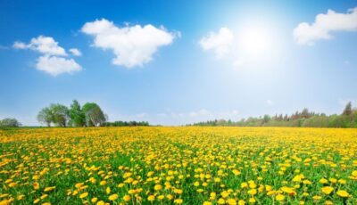 Meteorologii anunță pentru mâine zi cu soare și +22 de grade în termometre