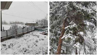 Ninge cu fulgi mari în Moldova! Iarna nu vrea să plece nici în aprilie