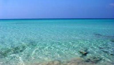Apa Mării Negre a devenit turcoaz. Explicația fenomenului uimitor