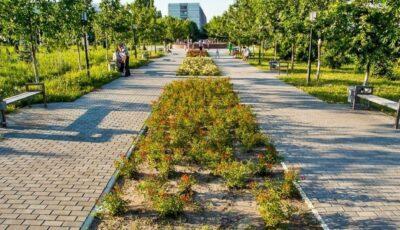 O nouă poartă accesibilă pentru vizitatori, la parcul Dendrariu
