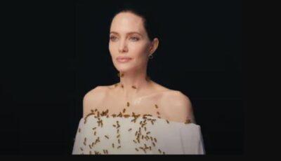 Video! Angelina Jolie s-a filmat cu un roi de albine pentru a atrage atenția asupra protecției acestora