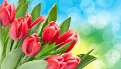 Astăzi este marcată Ziua Internațională a Dorului. Ție de cine sau de ce îți este dor?
