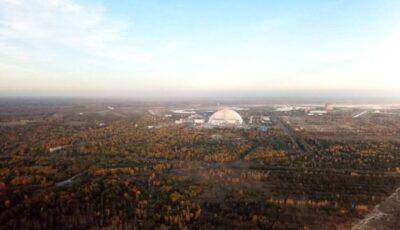 Cenobîl: Băutură alcoolică fabricată din mere crescute lângă fosta centrală nucleară, confiscată de autorități