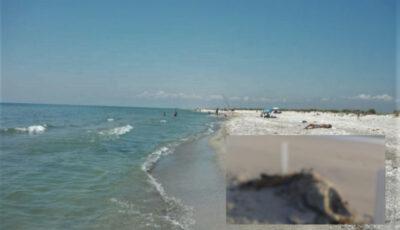 Cadavrele mai multor copii și femei, aduse de valuri pe o plajă din Libia. O organizație caritabilă bate alarma!
