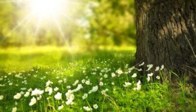 Vremea răcoroasă se va menține până la sfârșitul lunii iunie, afirmă specialiștii