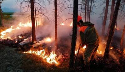 Incendii imense în Rusia, din cauza caniculei