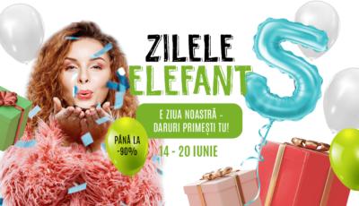Elefant.md – cel mai mare E-commerce din Republica Moldova, la 5 ani de la lansare