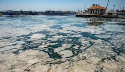 Mucilagiul marin, fenomen periculos în Marea Marmara. Zona de coastă din apropierea Istanbulului este acoperită de substanța vâscoasă
