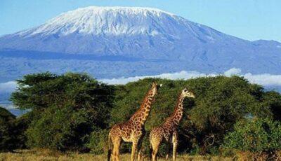 Un tânăr moldovean și-a cerut iubita în căsătorie pe muntele Kilimanjaro