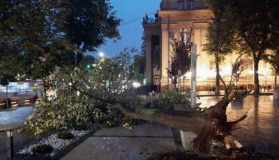 În urma ploilor de ieri, pompierii și salvatorii au intervenit în peste 100 de situații de risc