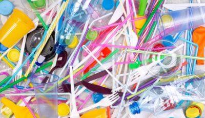Obiectele de plastic de unică folosinţă, interzise în Germania