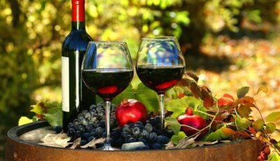 Vinurile moldovenești, premiate cu aur la Concours Mondial de Bruxelles