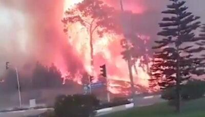VIDEO. Imagini de coșmar în Turcia: Incendii uriașe în două zone turisticei