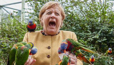 Angela Merkel a vizitat parcul de păsări din Marlow și a oferit imaginea zilei