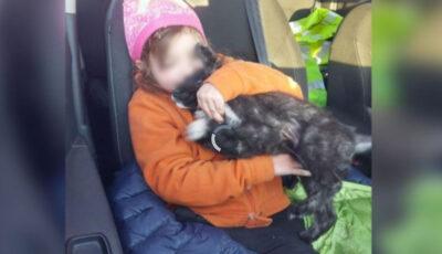 O fetița dată dispărută, găsită vie după o noapte petrecută pe câmp, cu un cățeluș lângă ea