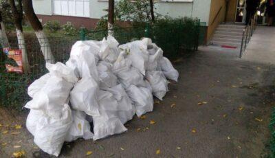 La Chișinău vor fi amenajate două platforme pentru reciclarea deșeurilor vegetale și celor din construcții