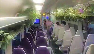 Confort pentru călători. Vagon de tren, decorat cu eucalipt şi levănţică şi transformat într-o sală de yoga