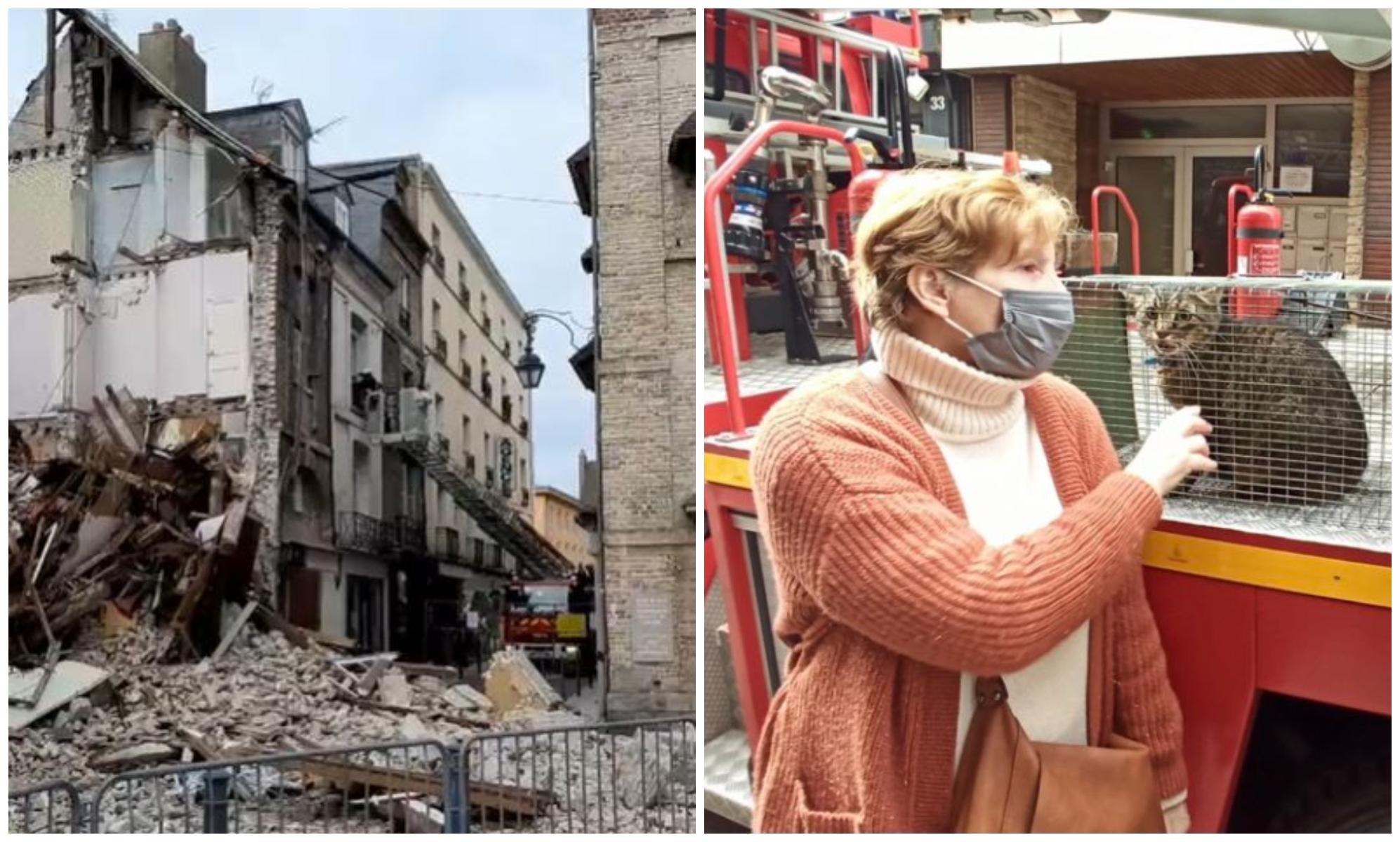 Foto: Zeci de mii de francezi au luptat pentru a salva de la moarte un motan, blocat timp de 11 zile într-o clădire avariată
