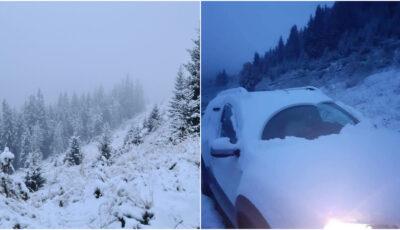 Ninge ca în povești aproape de Moldova